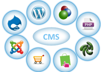 CMS Management System Development